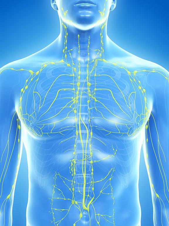 Le drainage lymphatique manuel selon la méthode du Dr Emil Vodder